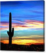 Arizona Sunset Saguaro National Park Canvas Print