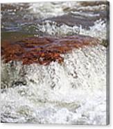 Arizona Water Canvas Print