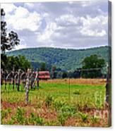 Arkansas Farmland Canvas Print