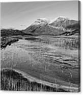 Arkle Canvas Print