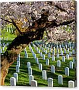 Arlington National Cemetary Canvas Print