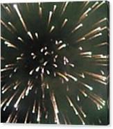 Around The Fourth Fireworks II Canvas Print