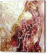 Aroura Canvas Print