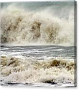 Arrival Of Sandy Canvas Print