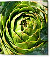Art E. Choke - Artichokes By Diana Sainz Canvas Print