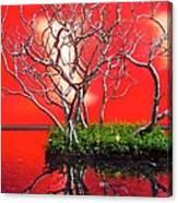 Art Installation Canvas Print