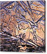 Art Of Ice 2 Canvas Print