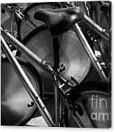 Art Of The Bicycle Canvas Print