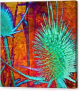 Art Thistles Canvas Print