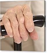 Arthritic Hand And Walking Stick Canvas Print