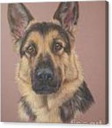 Arthur - German Shepherd Canvas Print