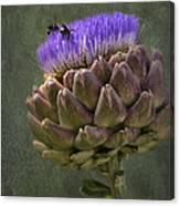 Artichoke Bloom And Bee Dip Canvas Print