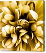 Artificial Flower Canvas Print