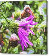 Artistic Aster In First Snow Fall 2 Imp 2-2 Canvas Print