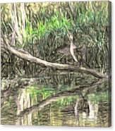 Artistic Drying Cormorant- Black Bird Sitting On Log Over Water Canvas Print