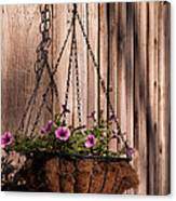 Artistic Hanging Basket Of Petunias Canvas Print