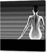 Artistic Nude Canvas Print