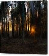 Artistic Painterly Sun Between Trees  Canvas Print