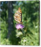 Artistic Butterfly Stand  Canvas Print