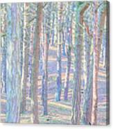 Artistic Trees Canvas Print