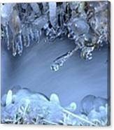 Artistry In Ice 17 Canvas Print