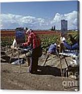 Artists Painting Tulip Fields Standing In A Row  Canvas Print