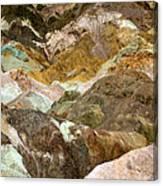 Artists Palette Canvas Print