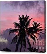 Aruba Sunset Canvas Print