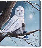 White Snow Owl Painting Canvas Print