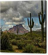 As The Clouds Pass By  Canvas Print