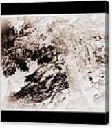 Askew Nature Picture Canvas Print