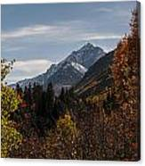 Aspen And Mountains 1 Canvas Print