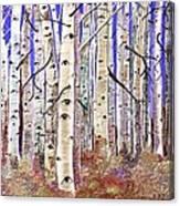Aspen Eyes Canvas Print