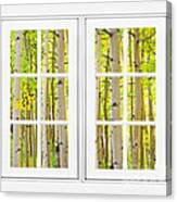 Aspen Forest White Picture Window Frame View Canvas Print