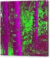 Aspen Grove 9 Canvas Print