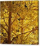 Aspen Leaves Textured Canvas Print