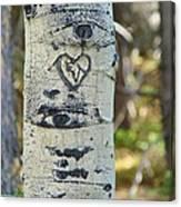 Aspen Love Canvas Print