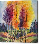 Aspen Overlook Canvas Print