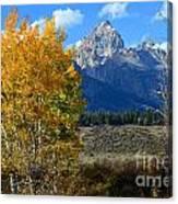 Aspen Peaks Canvas Print