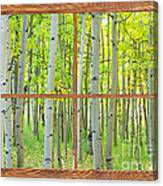 Aspen Tree Forest Autumn Picture Window Frame View  Canvas Print