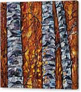 White Trees  Original Oil Painting  Canvas Print