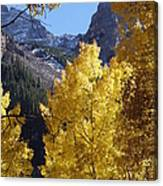 Aspen Window Canvas Print