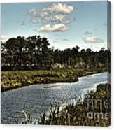 Assateague Island - A Nature Preserve Canvas Print