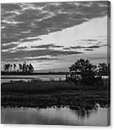 Assateague Salt Marsh Bw Canvas Print