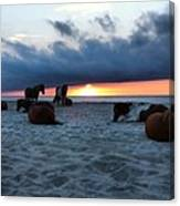 Assateague Sunrise Canvas Print