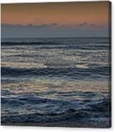 Assateague Waves Canvas Print