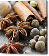 Assorted Spices Canvas Print