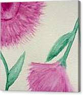 Aster In The Pink Canvas Print