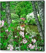 Asticou Azalea Garden Canvas Print