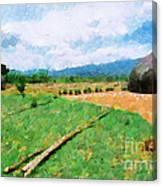 At Ethiopian Village Painting Canvas Print